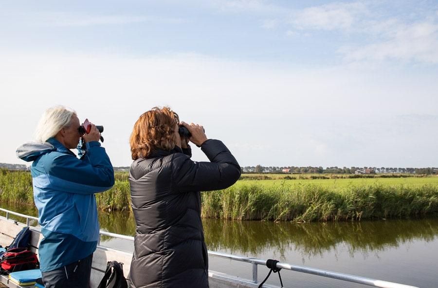 Vogels kijken in het Wormer- en Jisperveld